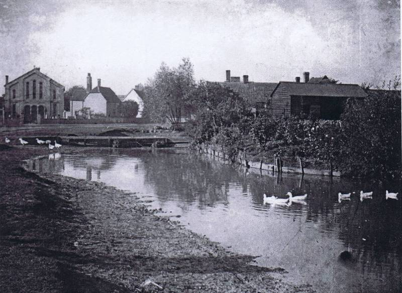 Willows pond about 1908