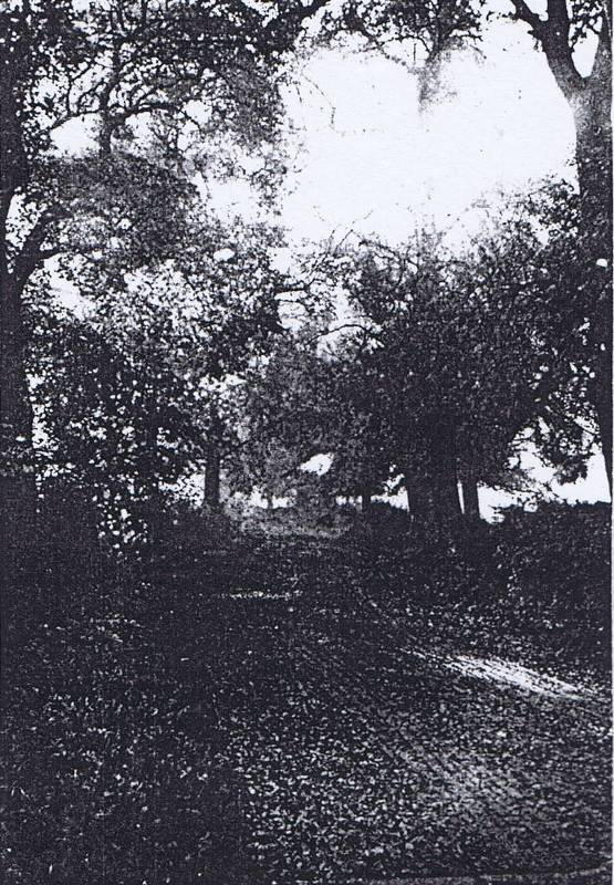 old mead road 1930