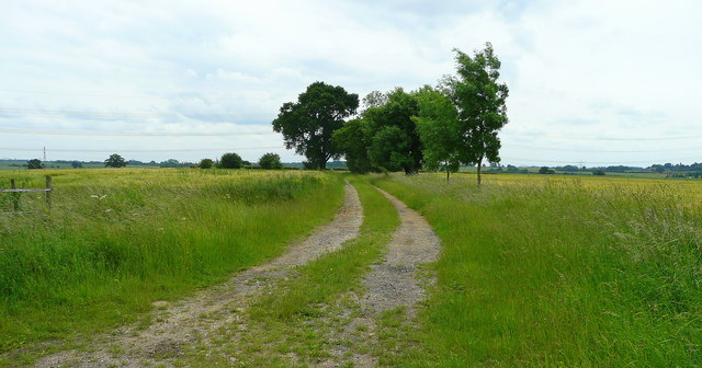 Little Henham Path